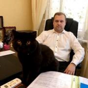 Адвокат по ДТП в Києві. Послуги адвоката в Києві