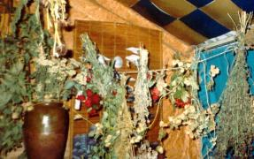 Heal with the miraculous power of healing herbs and roots