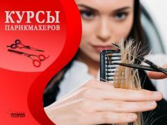 Обучение на курсах парикмахеров в Харькове, недорого